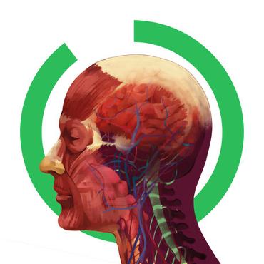 Arloon Anatomy – El Cuerpo Humano